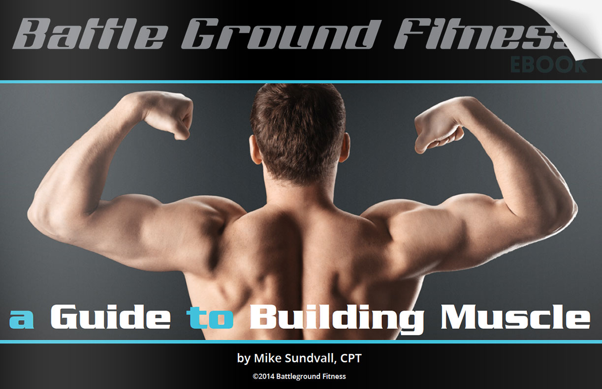 Muscle Building Ebook